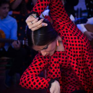 Flamenco show Granada Alternativa