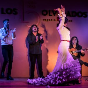 Flamenco show low cost