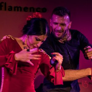 Flamenco low cost